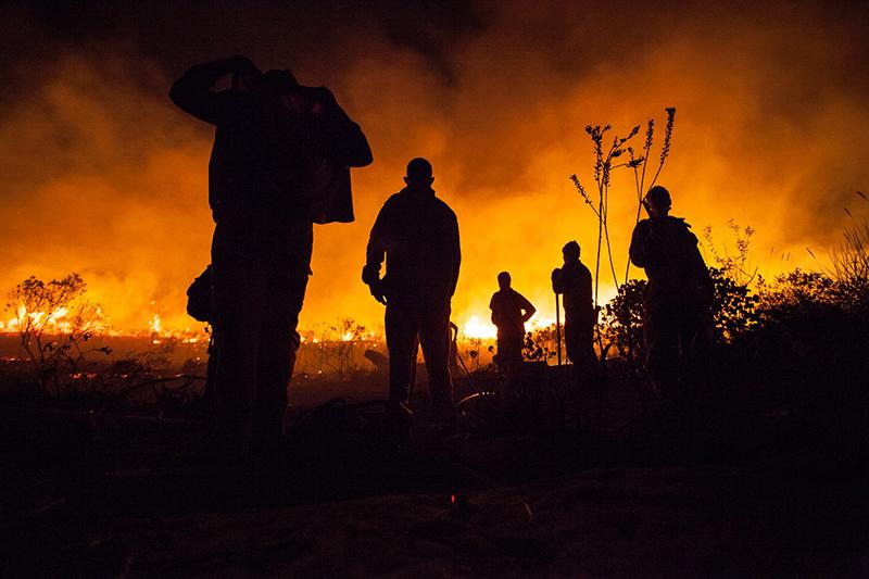 Resultado de imagem para incêndios criminosos