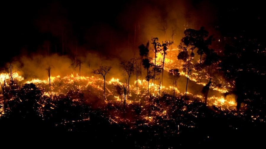Resultado de imagem para queimadas amazônia